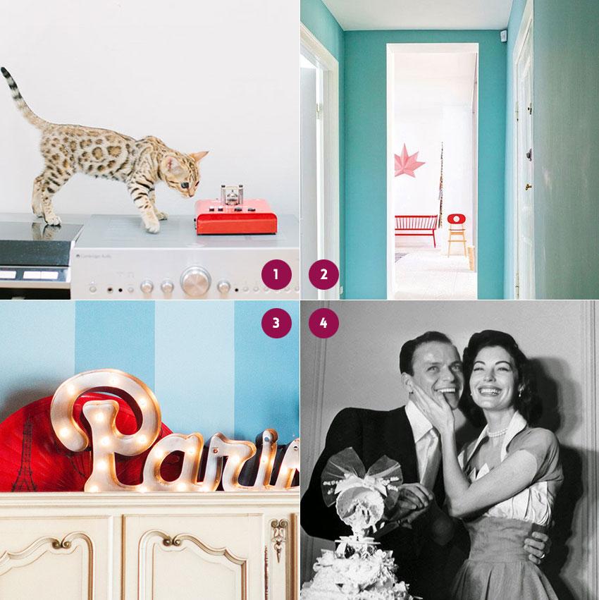 Achei bonito #7: mini-oncinha, corredor azul, letreiro luminoso e fotos de casamento vintage