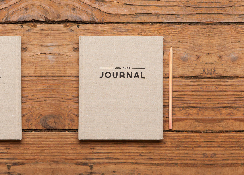 blogagem-coletiva-ser-2014-journal