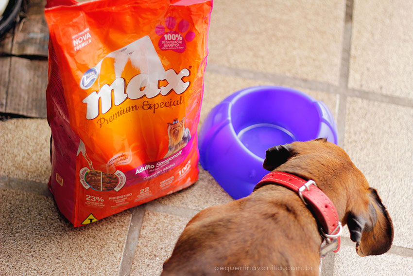 max-total-alimentos-5