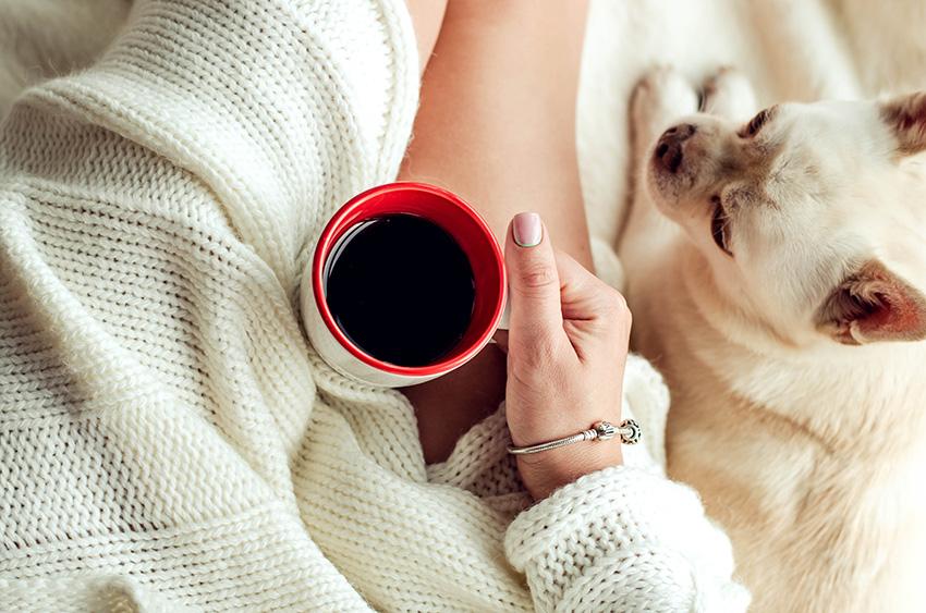 Preguicinha via Shutterstock