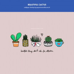 Wallpaper Beautiful Cactus: Download para desktop