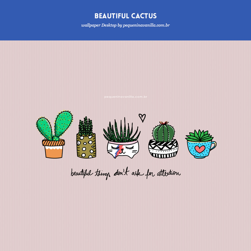 wallpaper-beautiful-cactus-1