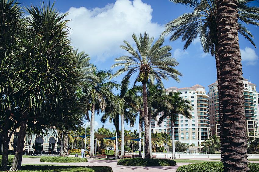 Celebration Winter Park Orlando Eye West Palm Beach Pequenina Vanilla