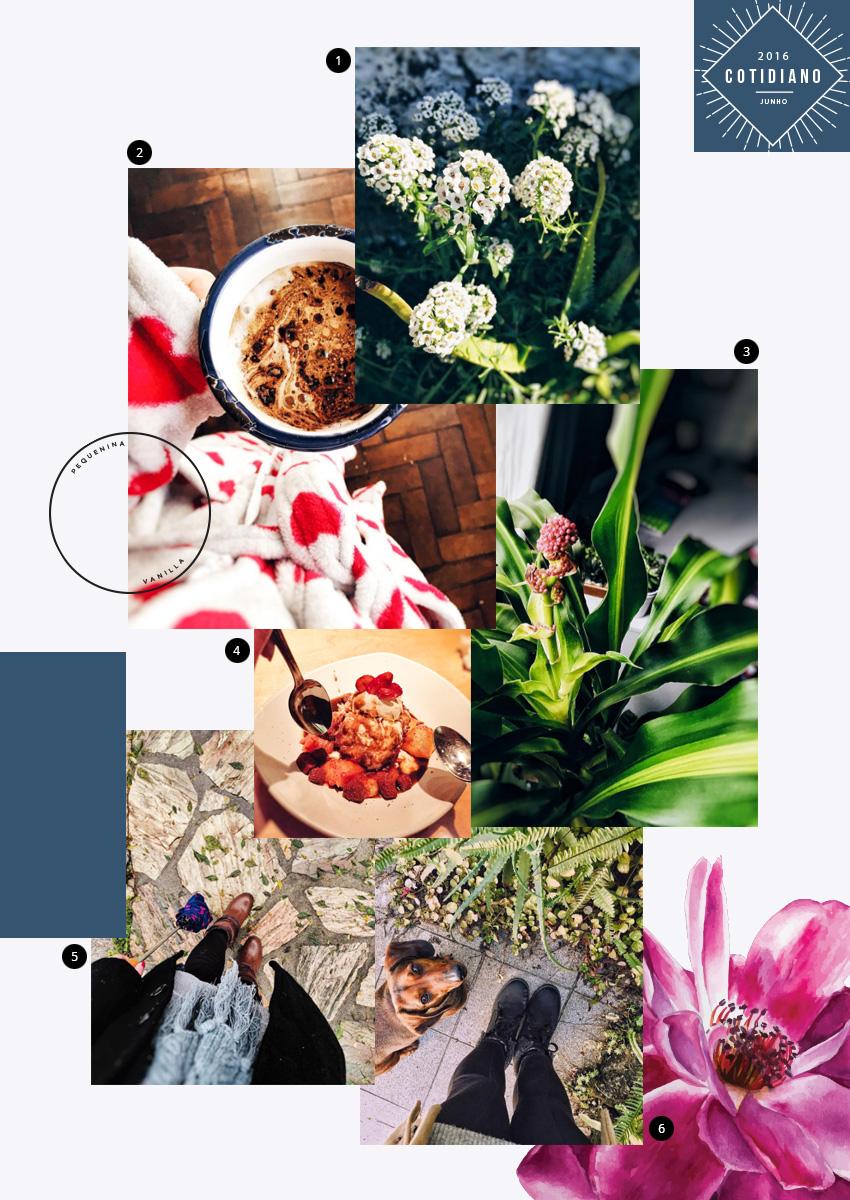 flor via Shutterstock