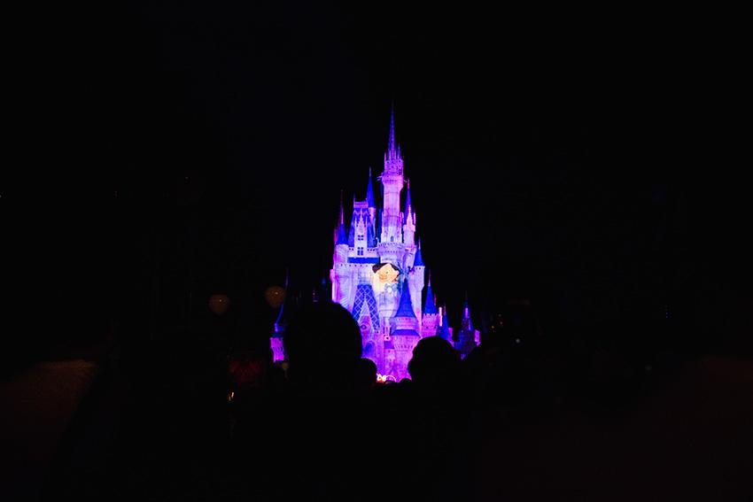 magic-kingdom-10