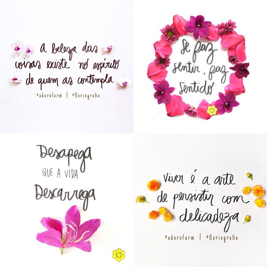 positividade-floriografia